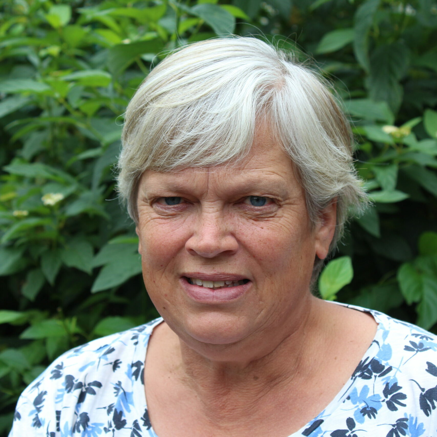 Katrien D